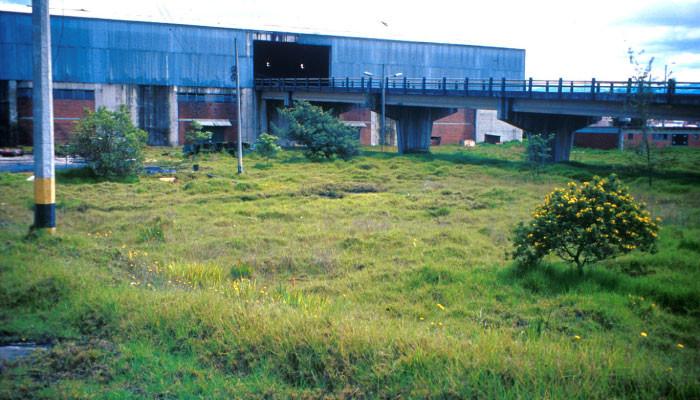 Parque para la biblioteca El Tintal