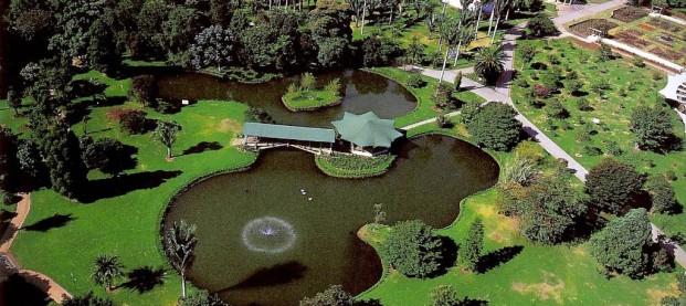 Conversatorio Jardín Botánico – Miembro de Jurado