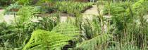 Primer Premio Categoría reconocimiento a la categoría de investigación: Manual Verde<br>Bienal de Arquitectura de Quito 2002